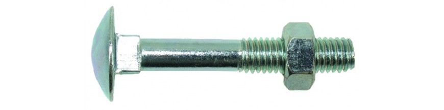 Tornillo DIN-603 zincado